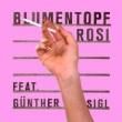 Blumentopf feat. Günther Sigl - Rosi